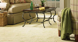 Carpet Cleaning Fort Worth Upholstery Cleaning Arlington