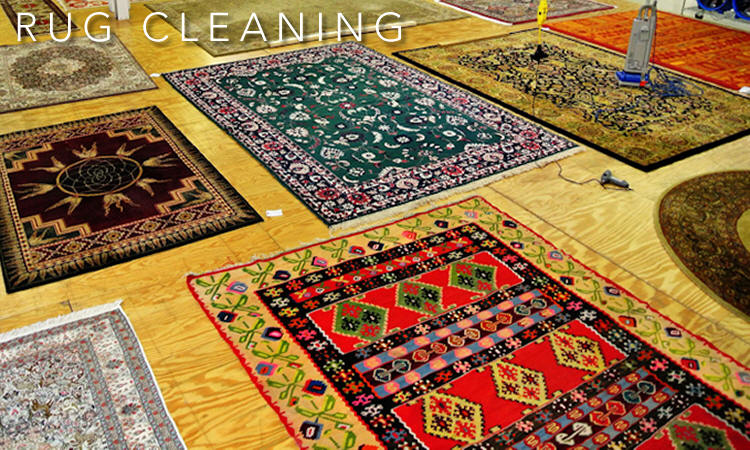 Area Rug Cleaners, Oriental Carpet Cleaning